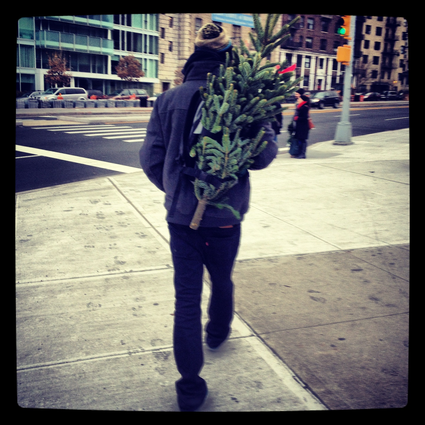 Christmas Tree Coming Home